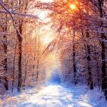 Horarios de Invierno
