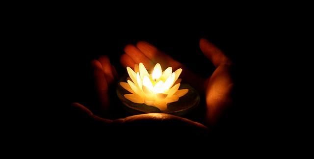 02 Octubre – Meditación Flor de Luz + Ritual de Otoño