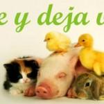 veganismo vive y deja