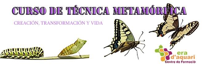 20 de Enero – Curso Técnica Metamórfica