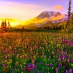 primavera-leyenda-1024x586